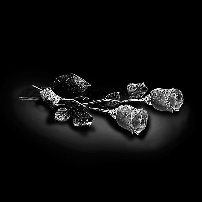 Цветы №3